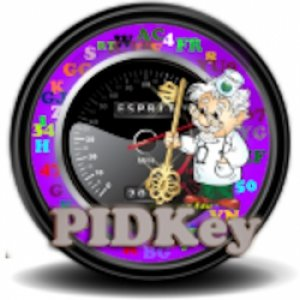 PIDKey 2.0.6 Portable [Multi/Ru]