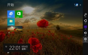 Microsoft Windows 8.1 Pro VL 17085 x86-x64 CN LegacyGames by Lopatkin (2014) Китайский