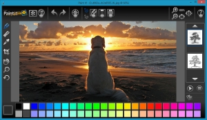 Corel Paint It! 1.0.0.127 [En/Ru]