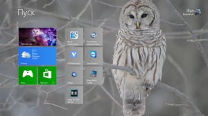 Windows 8 Blury With update's Core by Snowlion 9200 (x64) (2014) [Ru]