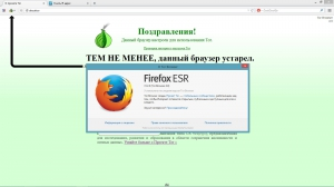 Tor Browser Bundle 4.0 Final [Ru]