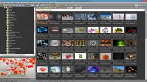 FastStone Image Viewer 5.3 Final Corporate RePack (& Portable) by D!akov [Multi/Ru]
