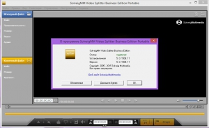 SolveigMM Video Splitter 5.0.1508.11 Business Edition + Portable [Multi/Ru]