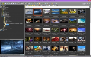 FastStone Image Viewer 5.5 Corporate + Portable [Multi/Ru]