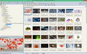 FastStone Image Viewer 5.5 RePack (& Portable) by KpoJIuK [Multi/Ru]