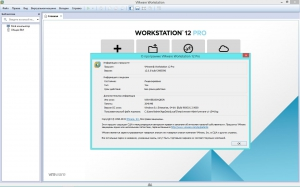 VMware Workstation 12 Pro 12.0.0 build 2985596 Lite RePack by qazwsxe [Ru/En]