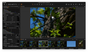 Capture One Pro 8.3.3 [Multi/Ru]