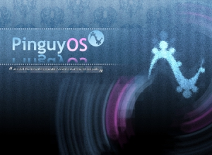 Pinguy OS 14.04.3 [x86-64] 2xDVD