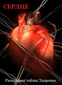 Раскрывая тайны. Здоровье. Сердце