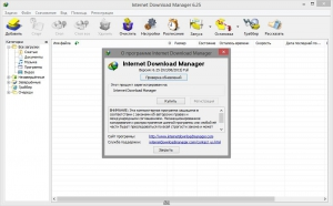 Internet Download Manager 6.25 Build 1 Final RePack by KpoJIuK [Multi/Ru]