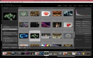 Adobe Photoshop Lightroom CC 2015.2.1 (6.2.1) [Multi]