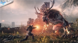The Witcher 3 Wild Hunt [Ru] (1.10/dlc) Repack =nemos=