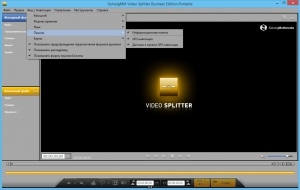 SolveigMM Video Splitter 5.0.1510.23 Business Edition + Portable [Multi/Ru]