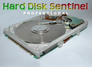 Hard Disk Sentinel Pro 4.60.13 Build 7377 Beta [Multi/Ru]