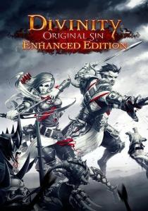 Divinity: Original Sin Enhanced Edition [Ru/Multi] (2.0.99.676/dlc) SteamRip Let'sPlay [Collector's Edition]