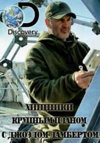 Discovery. Хищники крупным планом с Джоэлом Ламбертом / Predators Up Close with Joel Lambert (1-5 серии)