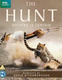 Охота / The Hunt (1 сезон 1-7 серия из 7) | AlexFilm