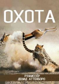 Охота / The Hunt (1 сезон: 1 серии из 7) | AlexFilm