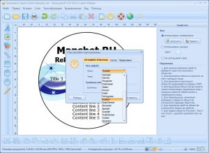 RonyaSoft CD DVD Label Maker 3.01.32 RePack by Manshet [Multi/Ru]