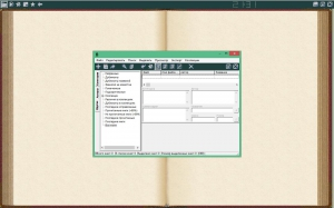 ICE Book Reader Pro 9.4.5 + SkinPack Portable by Valx [Ru]