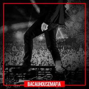 VA - BacauHouseMafia vol.2
