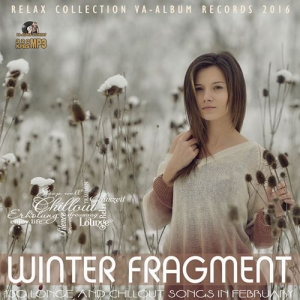 VA - Winter Fragment: Relax Party