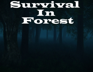 Survival In Forest