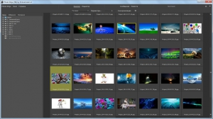 PictureCode Photo Ninja 1.3.2 (x86) RePack by WYLEK [Ru]