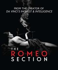 Отдел Ромео / Romeo Section (1 сезон 1-10 серии из 10) | kiitos