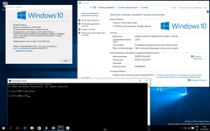 Microsoft Windows 10 Multiple Editions 10.0.14295 Insider Preview - Оригинальные образы от Microsoft MSDN [Ru]
