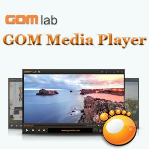 GOM Player 2.3.2 Build 5251 Final [Multi/Ru]
