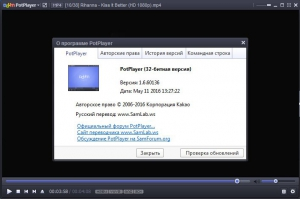 Daum PotPlayer 1.6.60136 Stable [Multi/Ru]