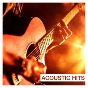 VA - Acoustic Hits