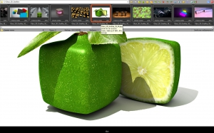 FastStone Image Viewer 5.7 Corporate + Portable [Multi/Ru]