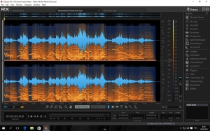 iZotope RX 5 Advanced Audio Editor 5.01.184 [En]