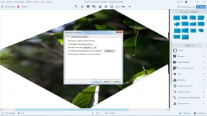 TechSmith Snagit 13.0.1 Build 6326 RePack by D!akov [Ru/En]