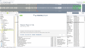 Resonic Player 0.7.6b build 1267 + Portable [En]