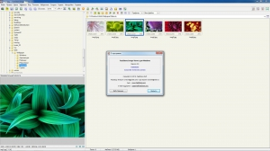 FastStone Image Viewer 5.8 Corporate + Portable [Multi/Ru]