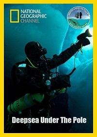 В глубинах Ледовитого океана