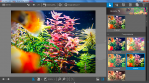 InPixio Photo Editor 1.5.6024 [Ru]