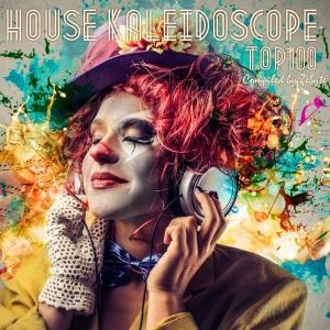 VA - House Kaleidoscope Top 100 [Compiled by Zebyte]