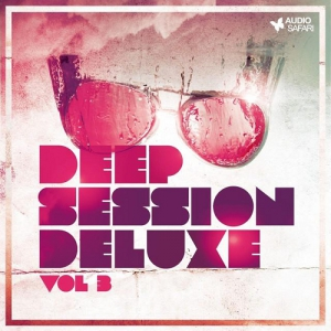 VA - Deep Session Deluxe Vol 3