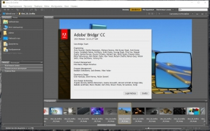 Adobe Bridge CC 2015 6.3.0.177 RePack by KpoJIuK [Multi/Ru]