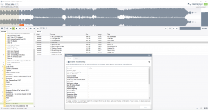 Resonic Player 0.7.7b Build 1264 [En]