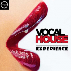 VA - Vocal House Experience Voyage