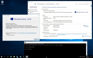 Microsoft Windows Server 2016 RTM Version 1607 Build 10.0.14393 - Оригинальные образы от Microsoft VLSC [Ru/En]