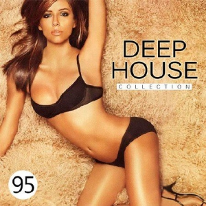 VA - Deep House Collection Vol.95