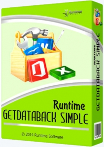 Runtime GetDataBack Simple 3.10 Portable by PortableAppZ [En]