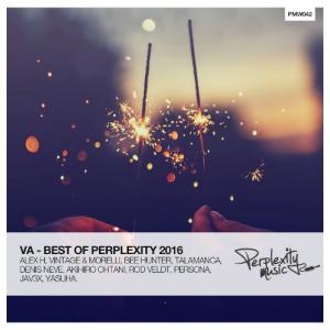 VA - Best of Perplexity 2016