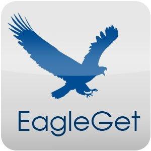 EagleGet 2.0.4.20 [Multi/Ru]